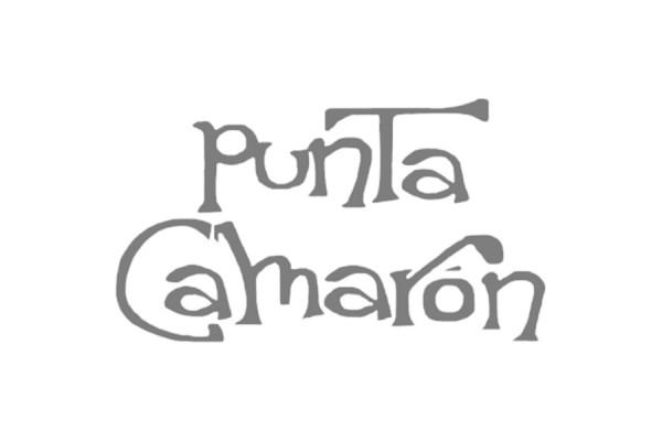 Patacón